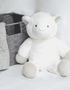 Archie the Sheep Cuddly Toy