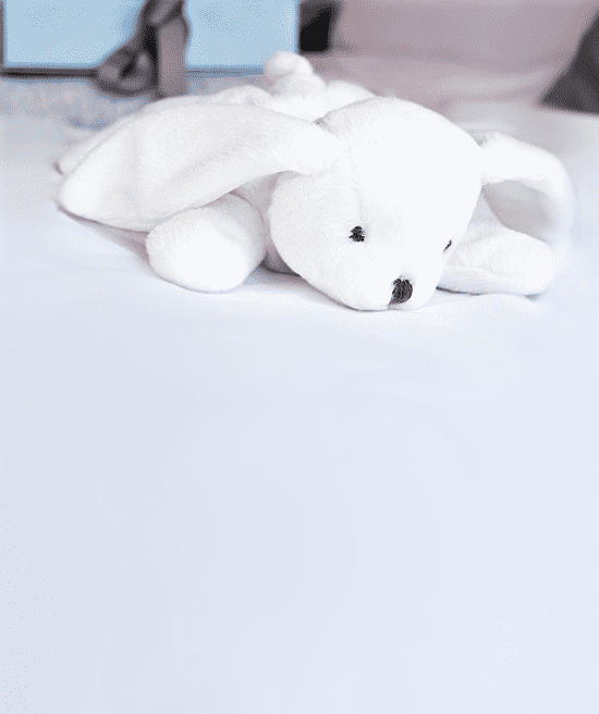 Beatty the Bunny Plush Toy Image 1