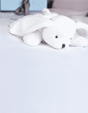 Beatty the Bunny Plush Toy